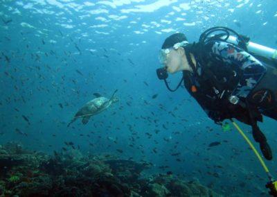 galerie-plongee-indonesie8